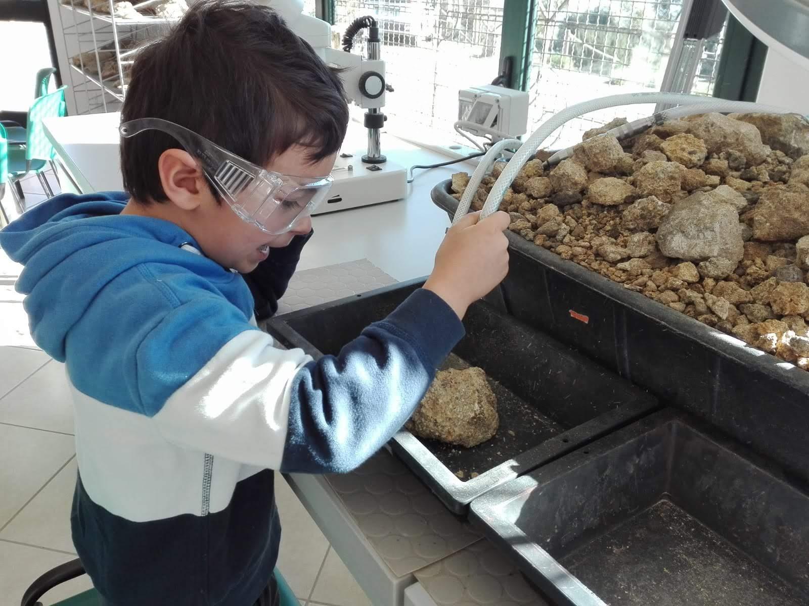Laboratorio Parc Museo del cavallino della Giara